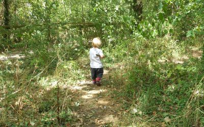 Summer Fun at the Nature Discovery Centre